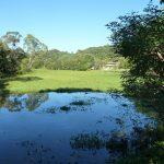 Water Lily Park Ocean Shores
